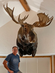 Alaskan Yukon Moose - No job is too big or too small for Creative Whitetails Taxidermy