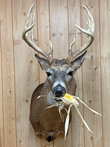 Creative Whitetails can recreate the exact moment when your buck was harvested